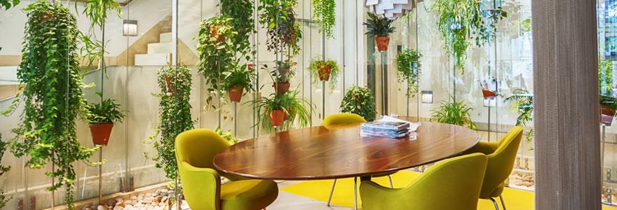 Aménagement intérieur de plantes